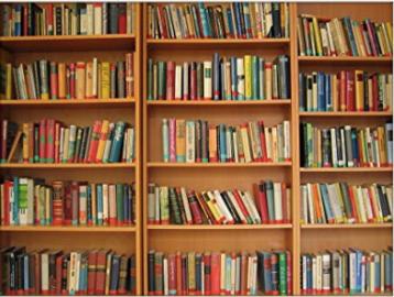 Library Shelf Blanket - my sister got me a similar one a few years ago and I love it! ($38) - https://www.amazon.com/YISUMEI-Blanket-Comfort-Bookshelves-Colorful/dp/B01MT3SPD8/ref=as_li_ss_tl?keywords=library+blanket&qid=1574286966&refinements=p_85:2470955011&rnid=2470954011&rps=1&sr=8-1-spons&psc=1&spLa=ZW5jcnlwdGVkUXVhbGlmaWVyPUEzNzRPNk5FSjIxWUFVJmVuY3J5cHRlZElkPUEwNTcxMTM1M0ExMjc2TlVISDYyNSZlbmNyeXB0ZWRBZElkPUEwNTA0MTY0MlBBWFEzWFQ4TklTQiZ3aWRnZXROYW1lPXNwX2F0ZiZhY3Rpb249Y2xpY2tSZWRpcmVjdCZkb05vdExvZ0NsaWNrPXRydWU=&linkCode=ll1&tag=bookmarksandb-20&linkId=c337661ae2af6dc14bf447b2aa7c100b&language=en_US